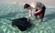 Stingray Adventure at Gibbs Cay
